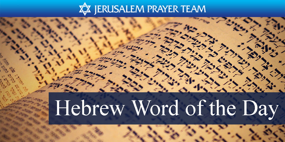 hebrew word of the day - peace  hello  goodbye